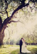 fotka pod stromem.. jak prosvítá to sluníčko.. krása..