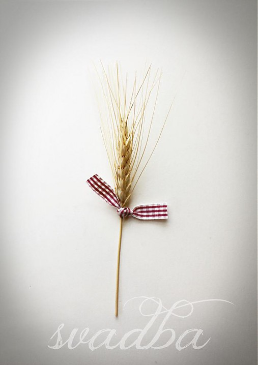 Kvety, folklór,... - http://www.sashe.sk/Maymic/detail/svadobny-klasok
