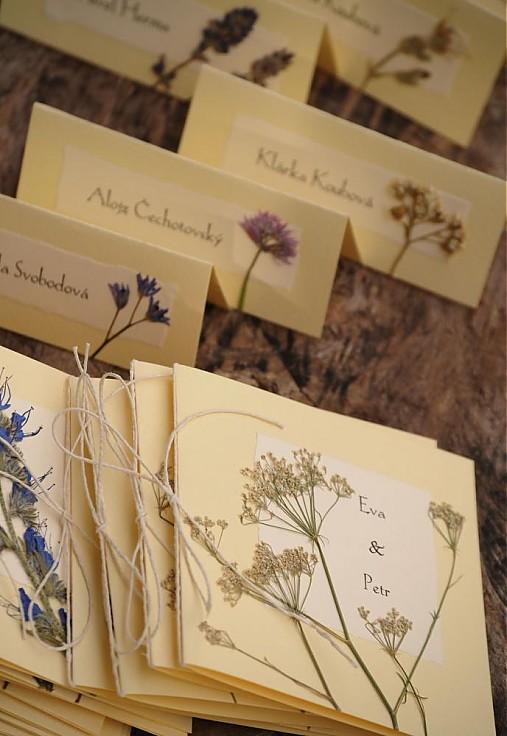 Kvety, folklór,... - http://www.sashe.sk/StudioES/detail/menovky-kvitnuca-luka