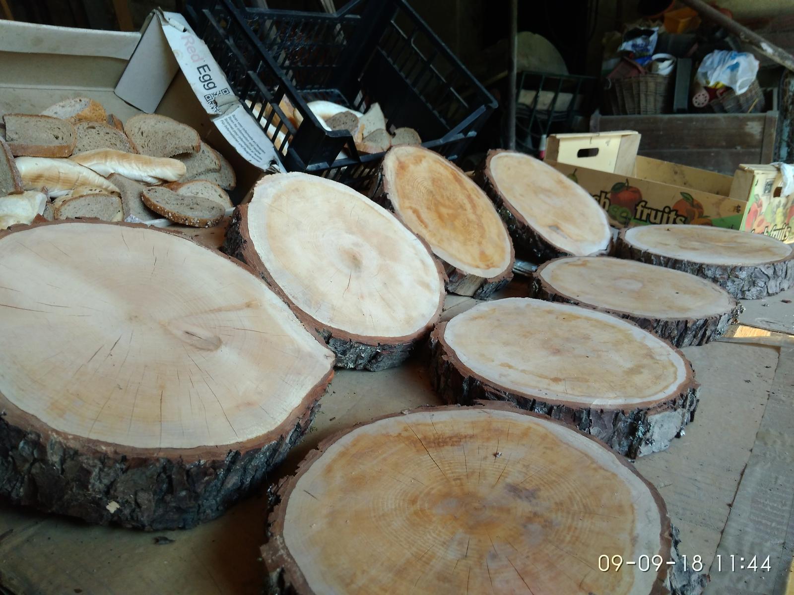 Dřevěné kulatiny / podnosy / dekorační pláty dřeva - Obrázek č. 2