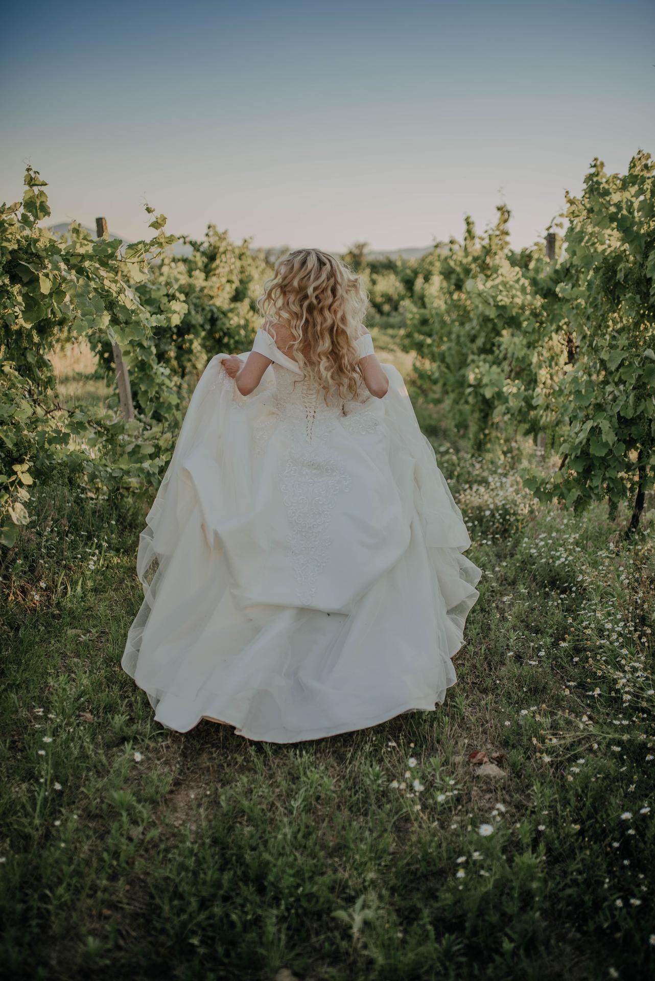 svadobné fotenie vo vinohradoch