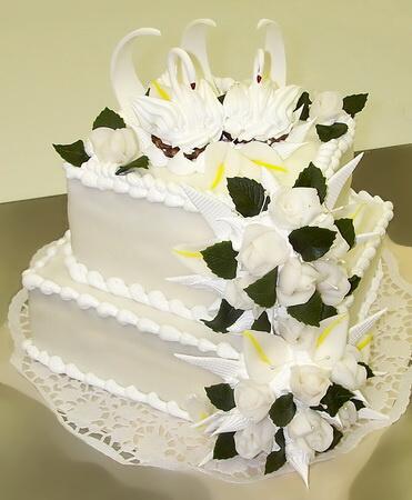 Nasa priprava na svadbu - Obrázok č. 5