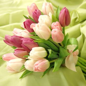 Svadobna kytica z tulipánov - Obrázok č. 26
