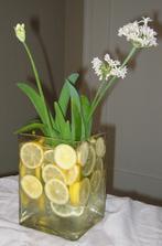 namiesto citronov si predstav zelene limetky :-)