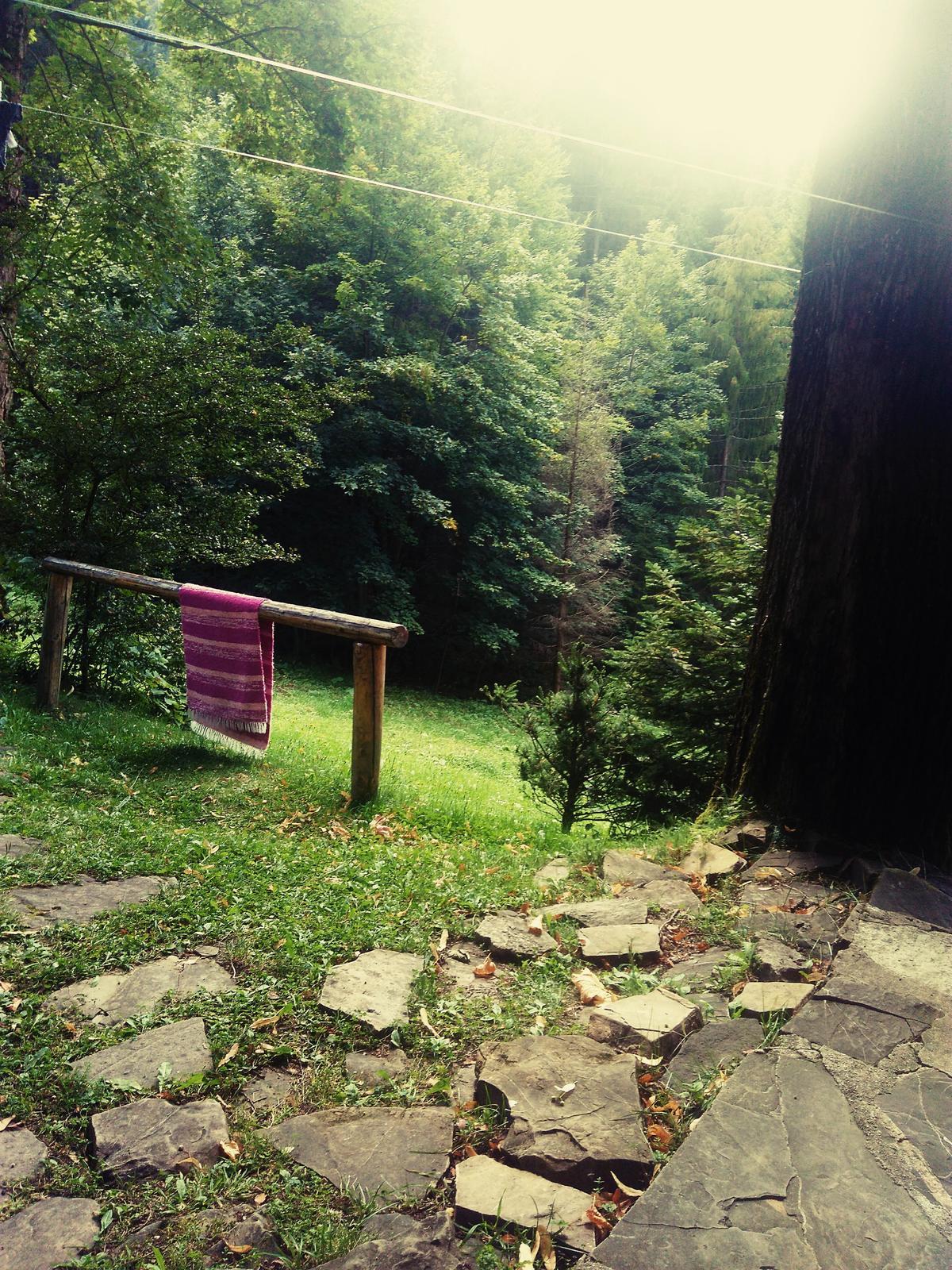 U nas na drevenici. - Obrázok č. 25