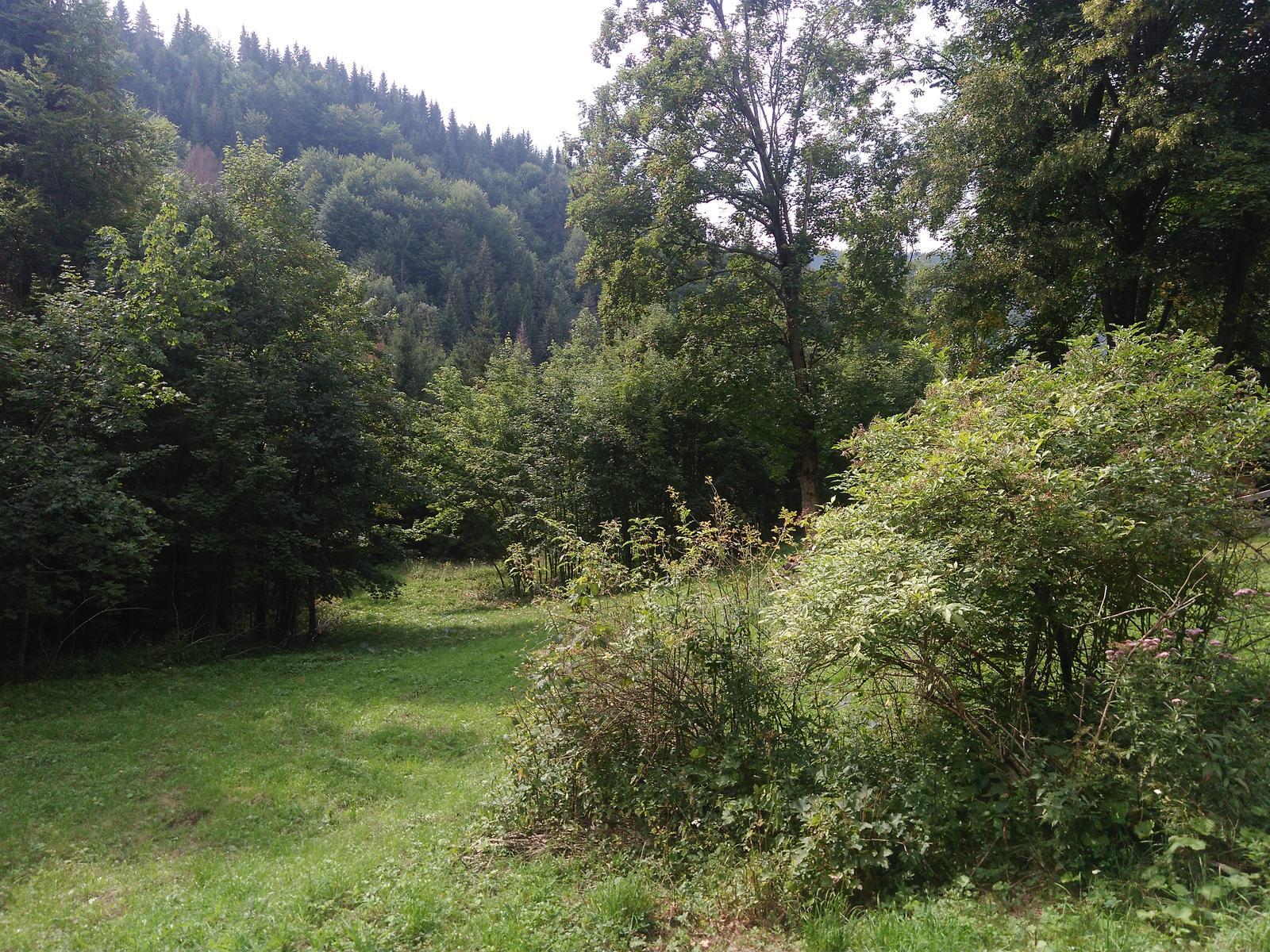 U nas na drevenici. - Obrázok č. 4