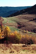 jesenná krása-inšpiracia