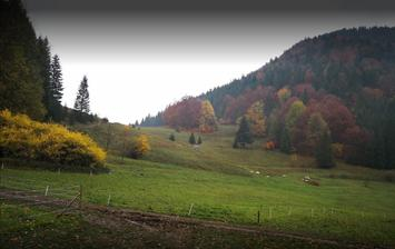 Jesenný Podžiar-Terchová