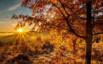 podzim-inspiracia