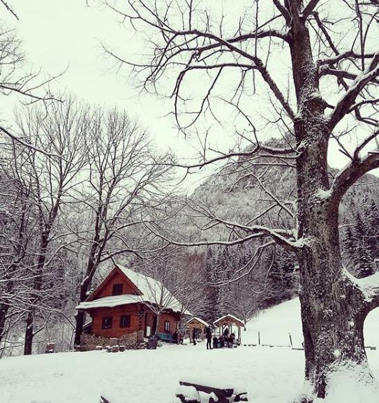 Zima na dreveniciach - Obrázok č. 59