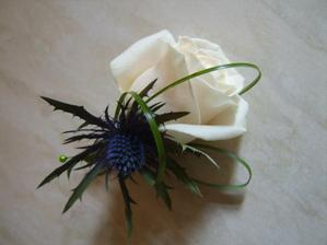 button hole. Rose and Thistle Buttonhole with looping Grass