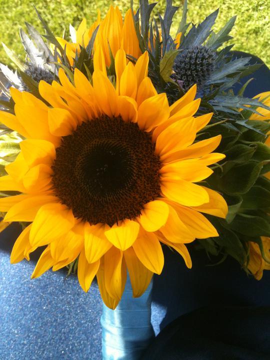 Kathryn beard{{_AND_}}Iain larkin - bridesmaids flowers