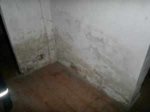 a supr zeď v dolní chodbě. Mokré to není, tak že by plíseň?