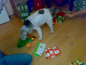 i naše foxteriérka Orka se nemohla dárečků dočkat