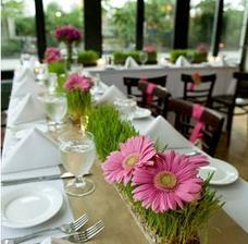 výborný nápad k oživení bílo-zeleného stolu :-)