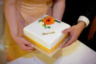 děkovný dort za syna (od Kamila Jursy)