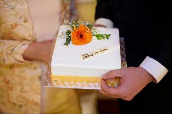 děkovný dort za dceru (od Kamila Jursy)