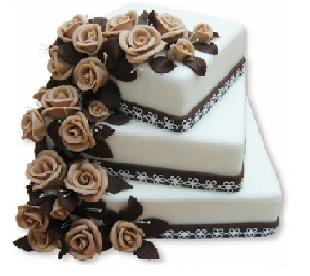 Co máme a co se mi líbí, hnědo-bílá svatba... - zaplacená záloha, už je to jasny...