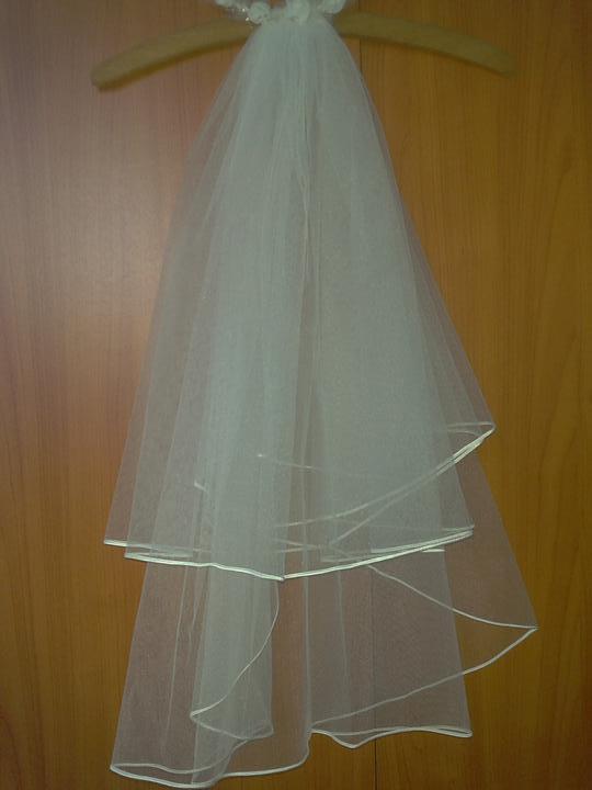 Co máme a co se mi líbí, hnědo-bílá svatba... - závoj jsem dostala od kolegyně, už i odzkoušený s šaty a bude...