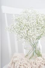 https://mypieceofvintageprairie.blogspot.sk/2018/01/flower-of-month-babys-breath-kvet.html
