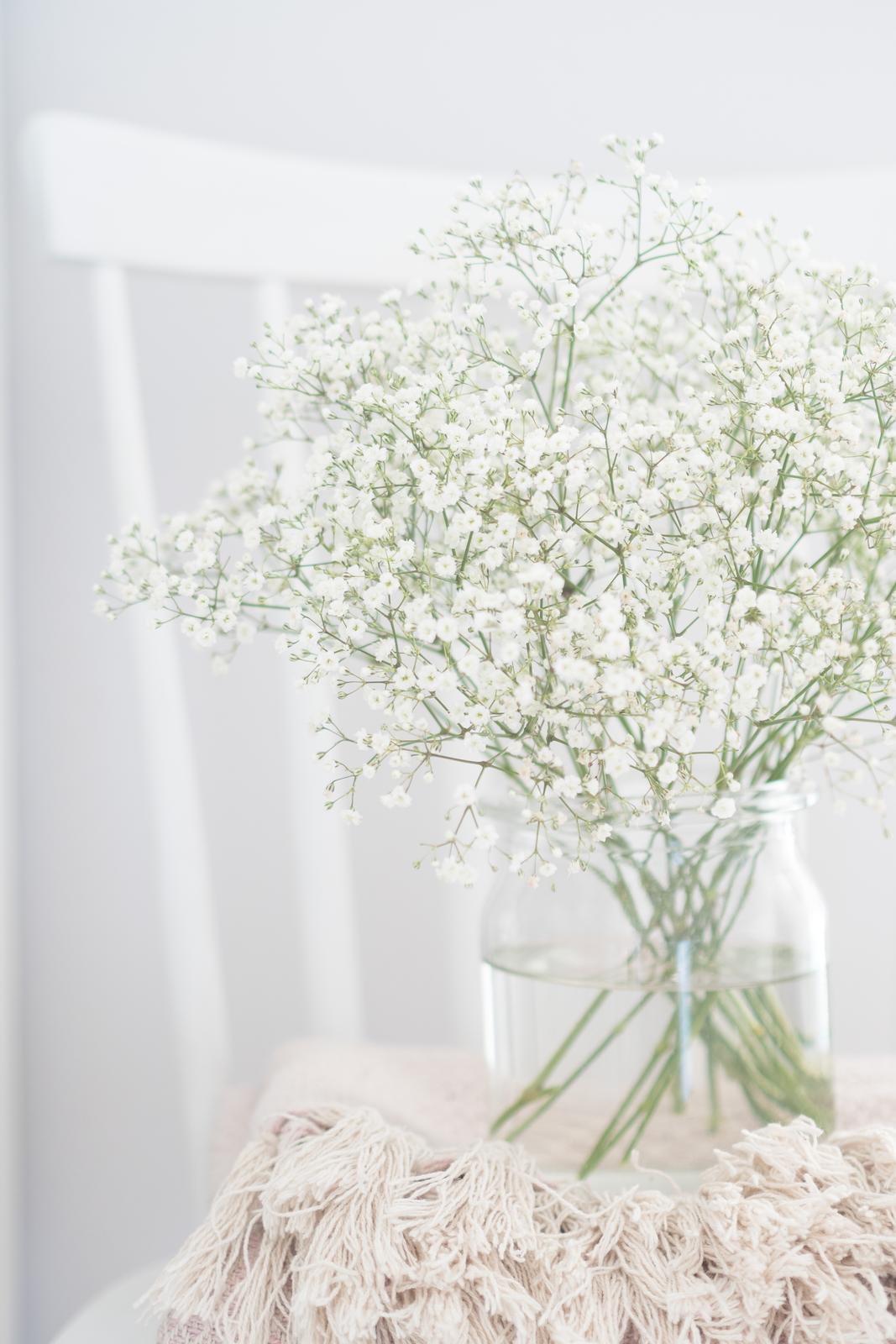 Prairie Charm - môj blog a bývanie - https://mypieceofvintageprairie.blogspot.sk/2018/01/flower-of-month-babys-breath-kvet.html