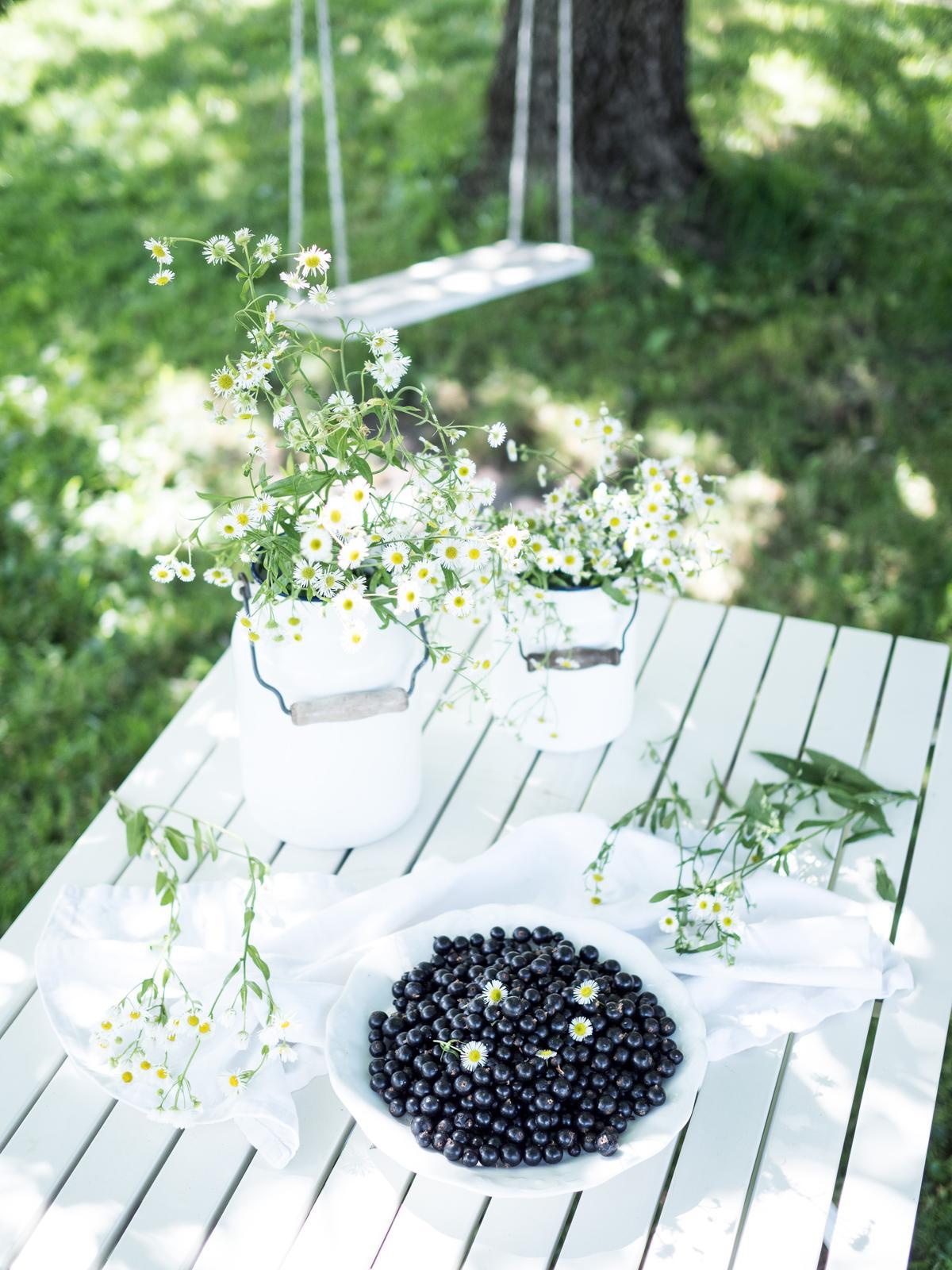 Záhrada a terasa - http://www.prairie-charm.com/2018/07/junova-zahrada.html