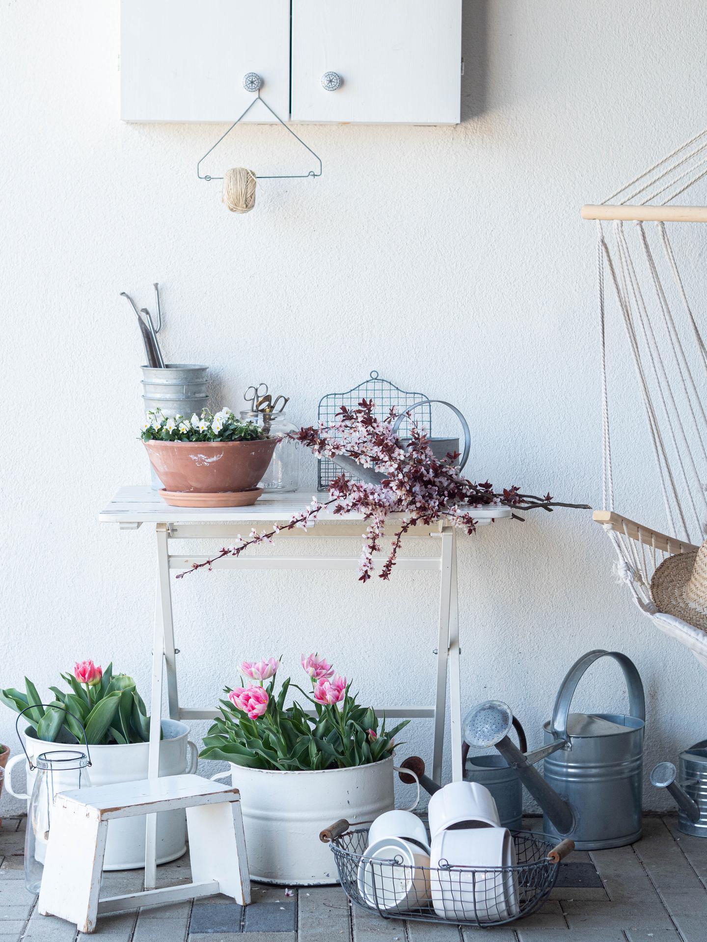 Záhrada a terasa - Obrázok č. 122