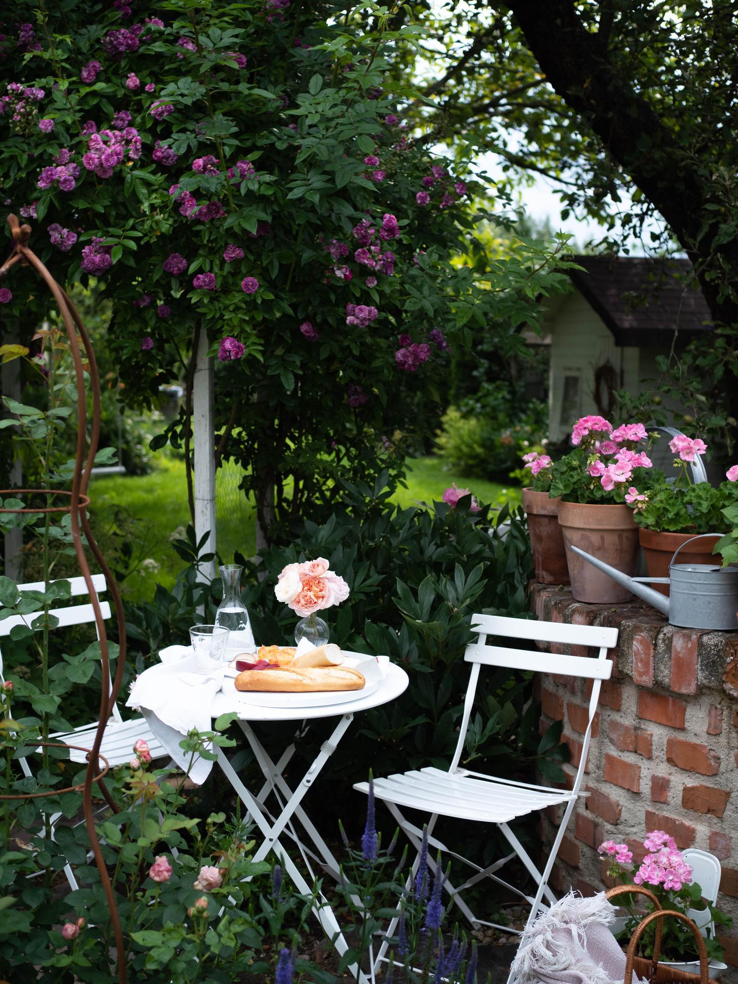 Záhrada a terasa - Obrázok č. 137