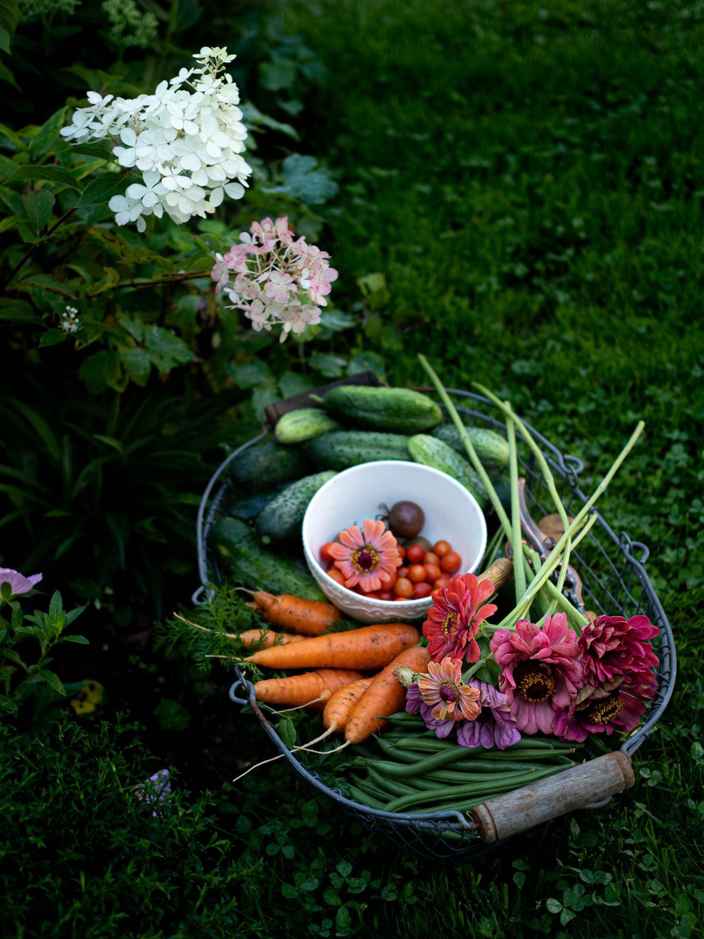 Záhrada a terasa - Obrázok č. 140