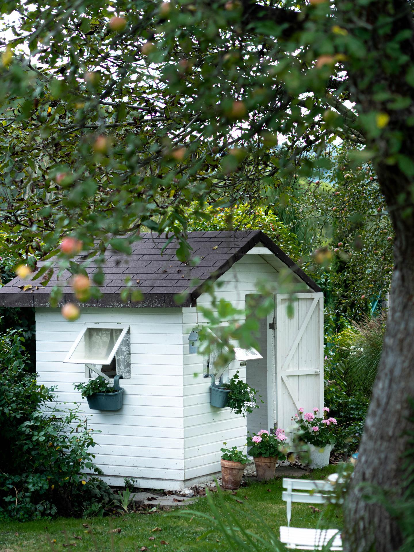 Záhrada a terasa - Obrázok č. 146