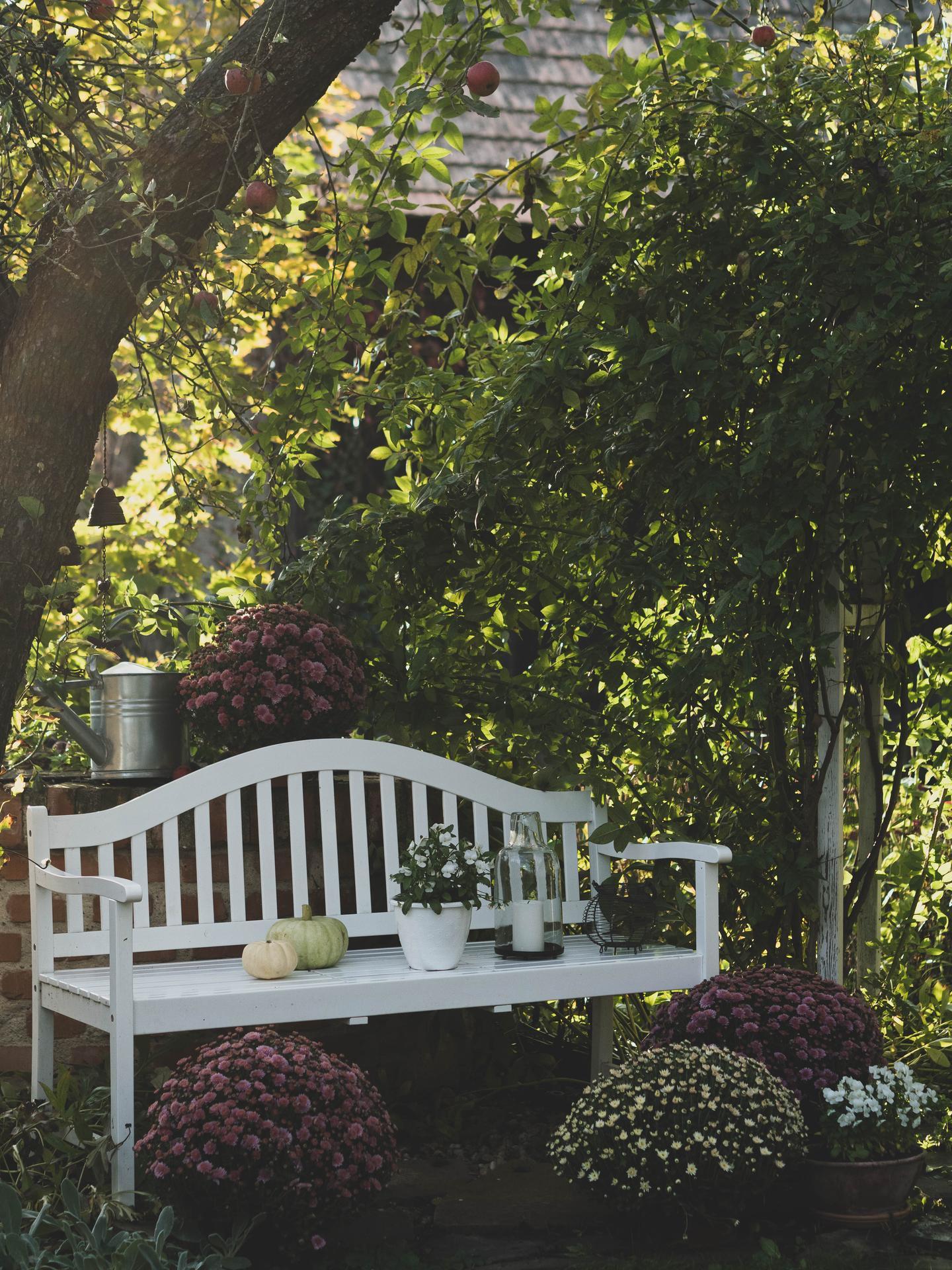 Záhrada a terasa - Obrázok č. 151