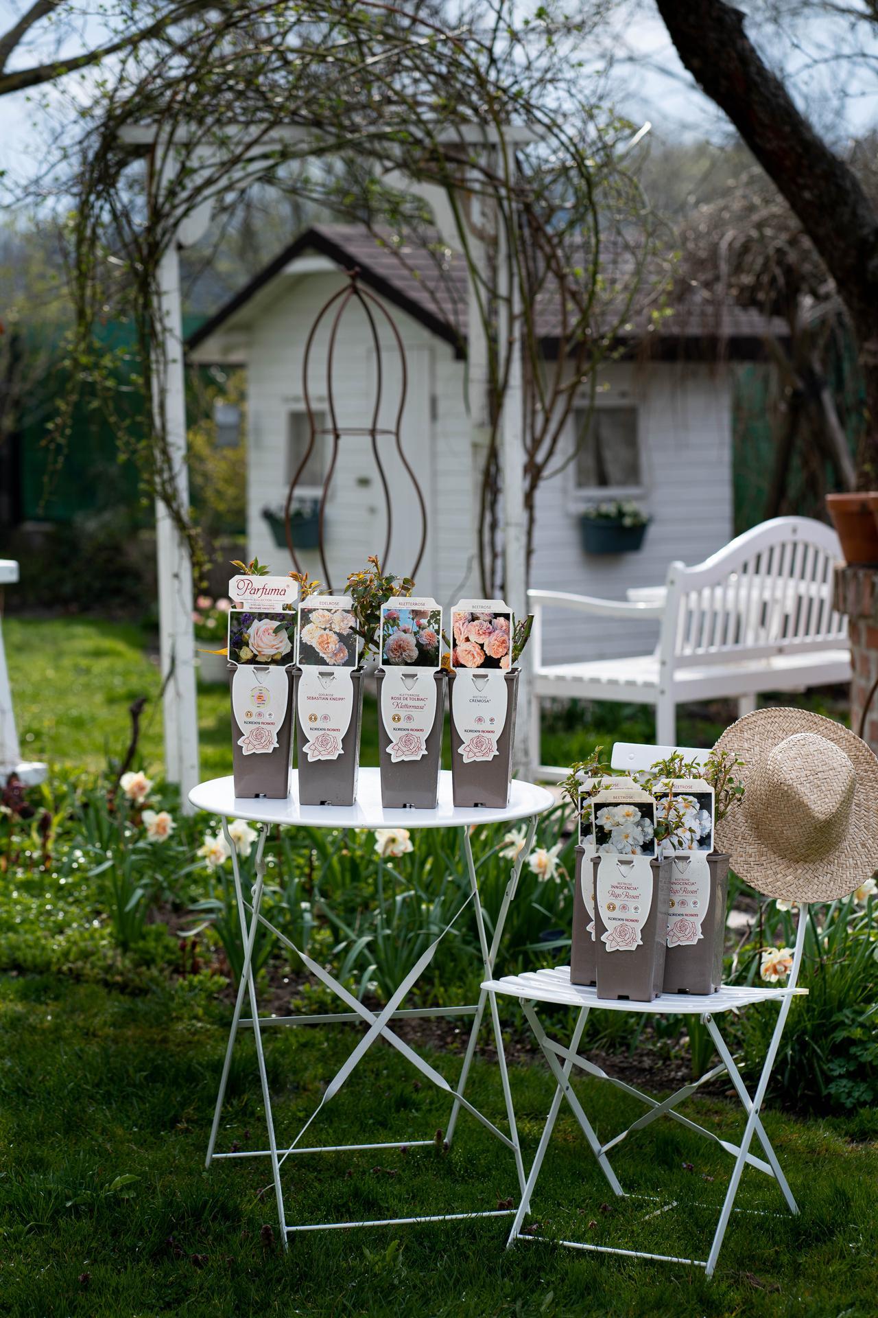 Záhrada a terasa - Obrázok č. 162