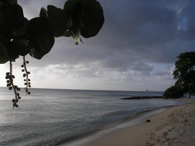 Martina{{_AND_}}David - svatební cesta na Barbados