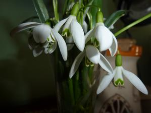 trocha jara u nás doma