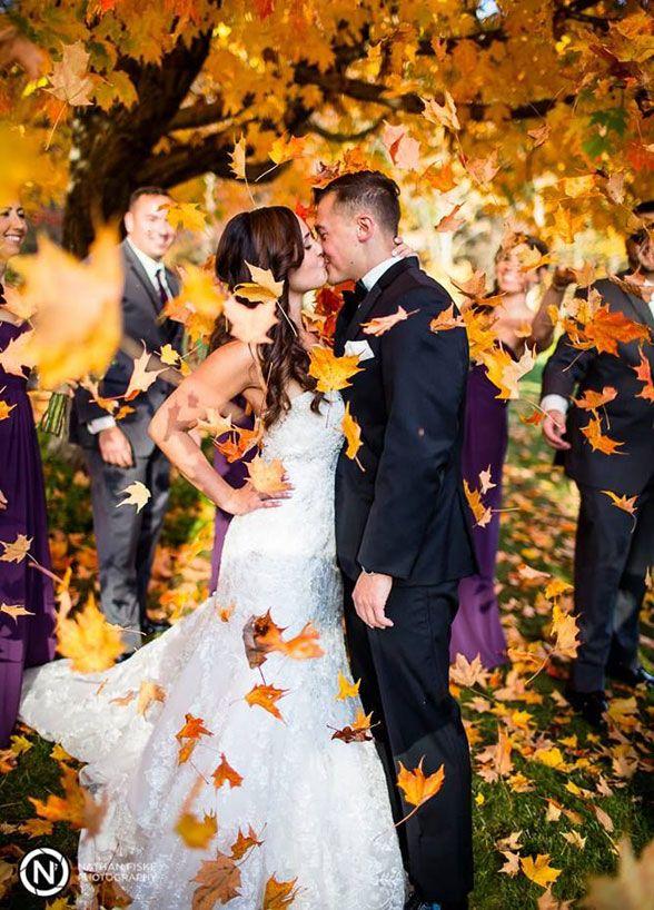 Svadba na jeseň - Obrázok č. 6