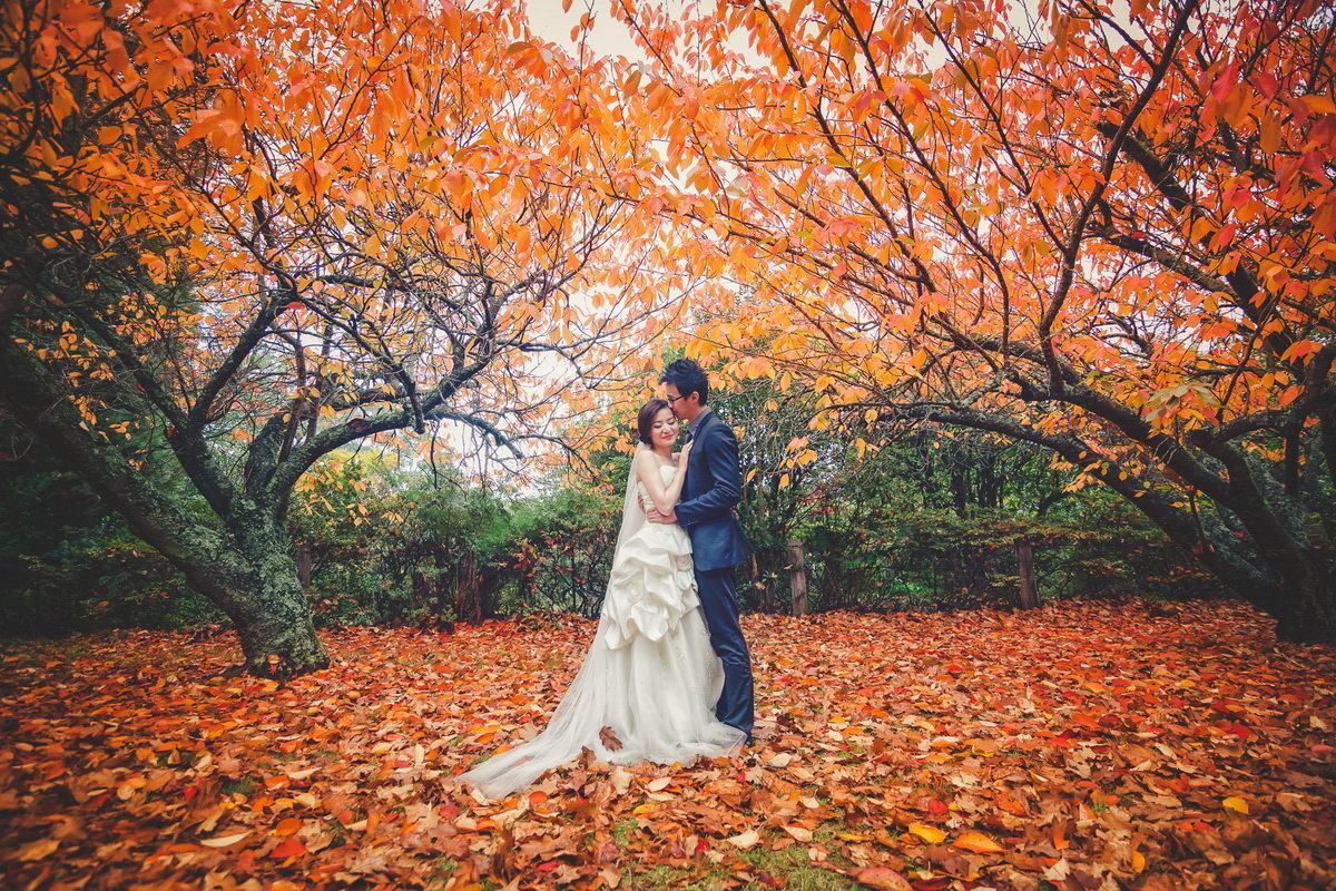 Svadba na jeseň - Obrázok č. 17