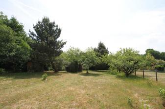 Ovocne stromy vpravo boli vo velmi zlom stave. Dali sme ich prec a zasadime si nove.