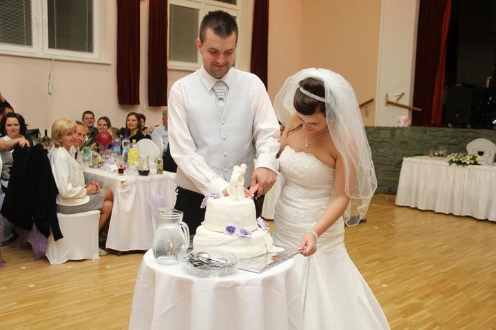 Pánska svadobná vesta  - Obrázok č. 1