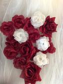 Rudé a bílé květy růžiček,