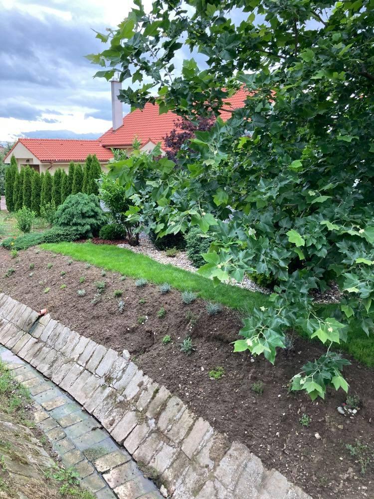 ahojte záhradkári -prosím o radu pred domom máme svah ,minulý rok som tam vysadila skalničky v nádeji ,že sa svah spevní ale treba ho odburiňovať a zem hrozne padá dolu ,viete mi poradiť ako by som vedela svah spevniť? Ďakujem pekne - Obrázok č. 1