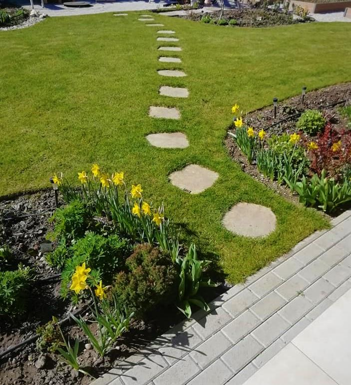 22.03.2020 záhrada ožíva. Záhony sa pomaličky vyfarbujú, na teraz dominuje zelená a žltá  :) - Obrázok č. 1