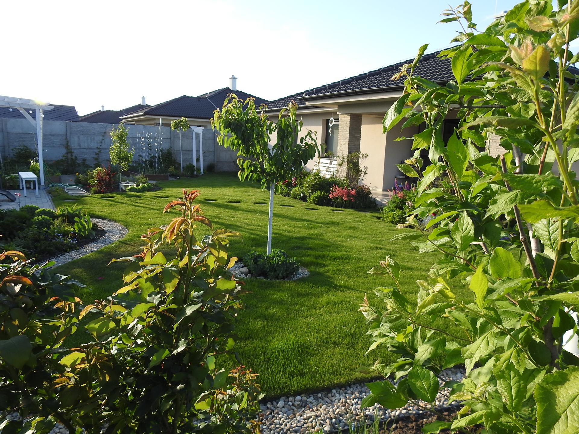 májový náhľad do záhrady - Obrázok č. 15