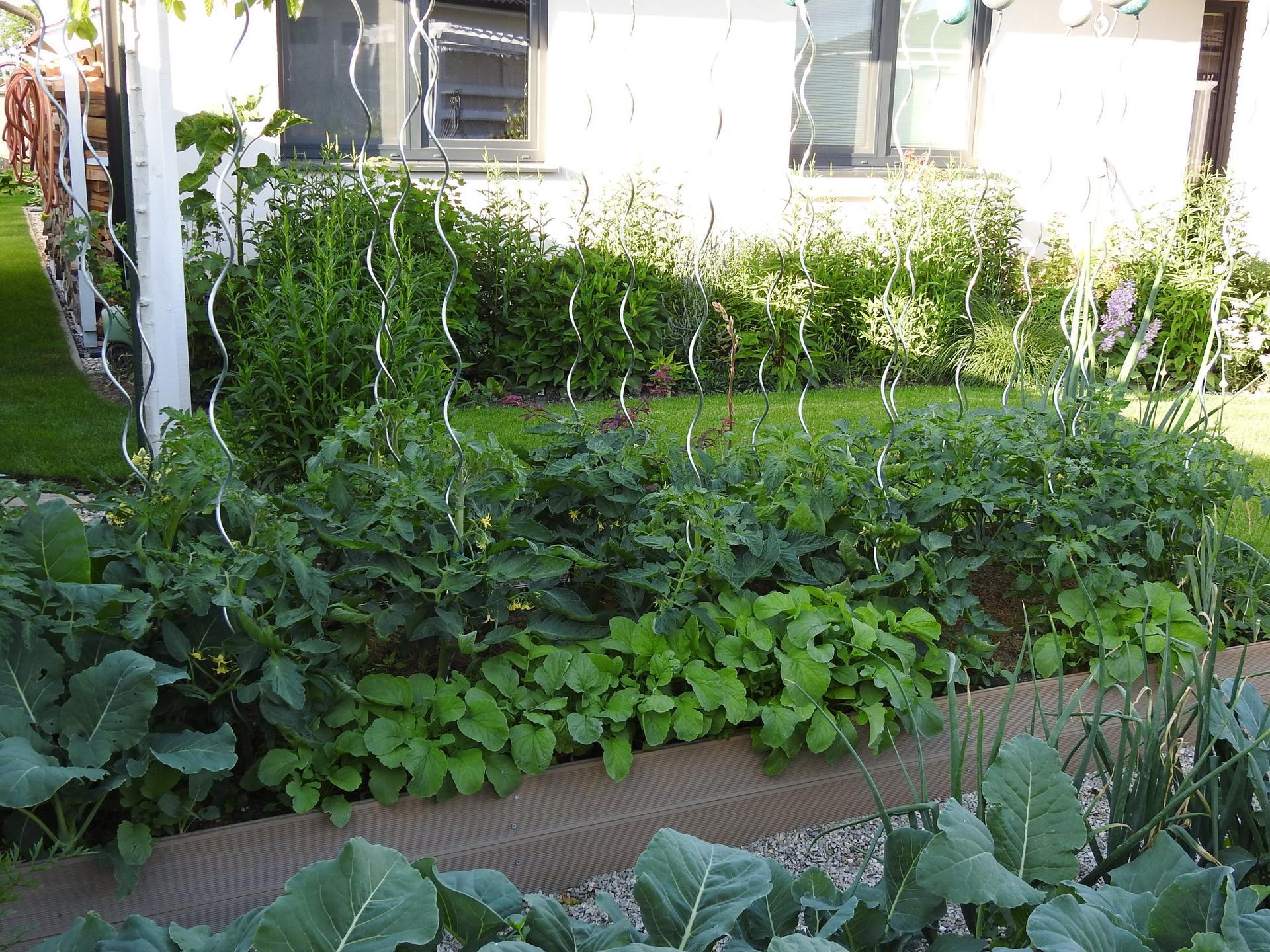 Úžitková časť záhrady - Obrázok č. 4