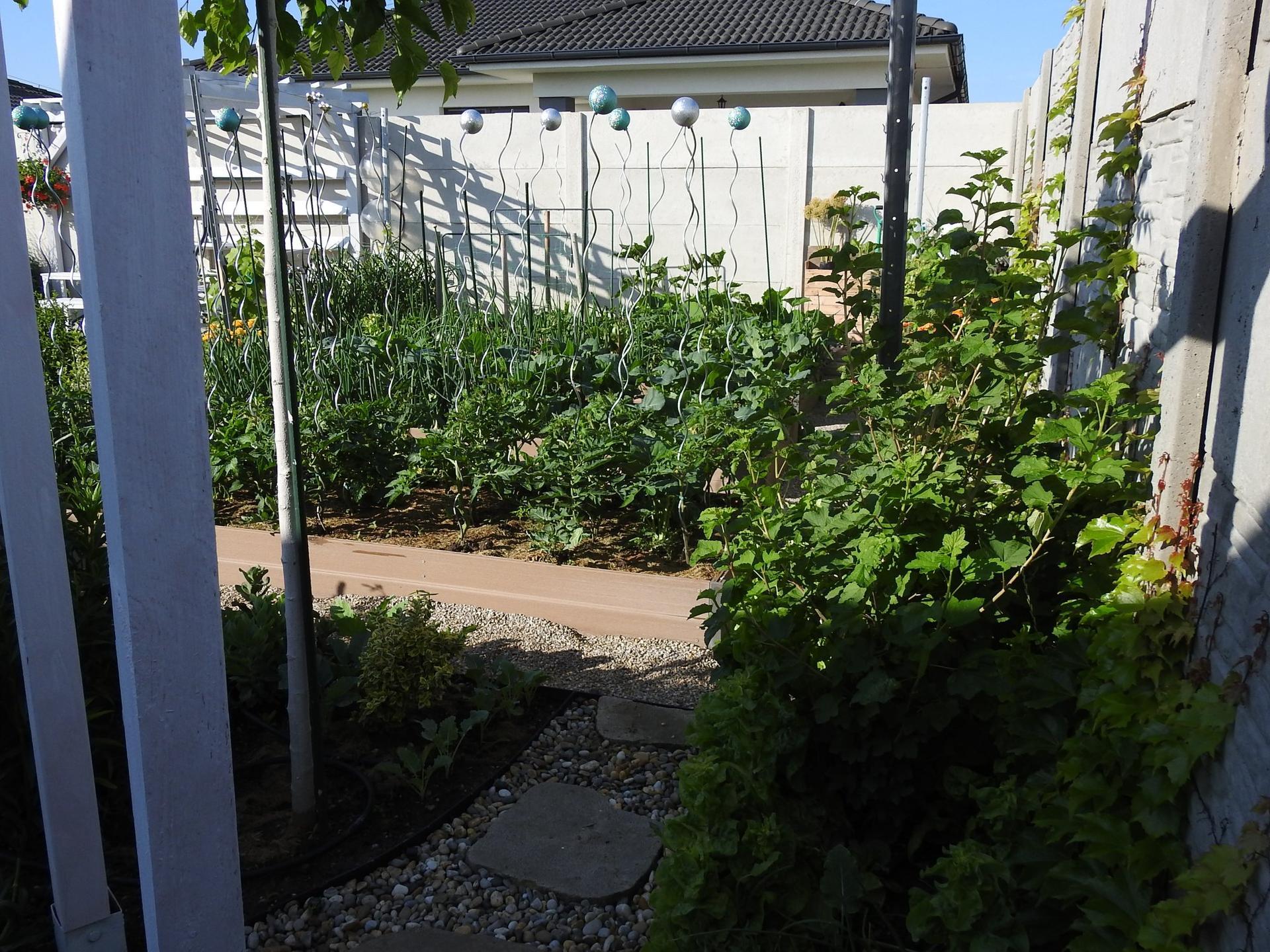 Úžitková časť záhrady - Obrázok č. 9