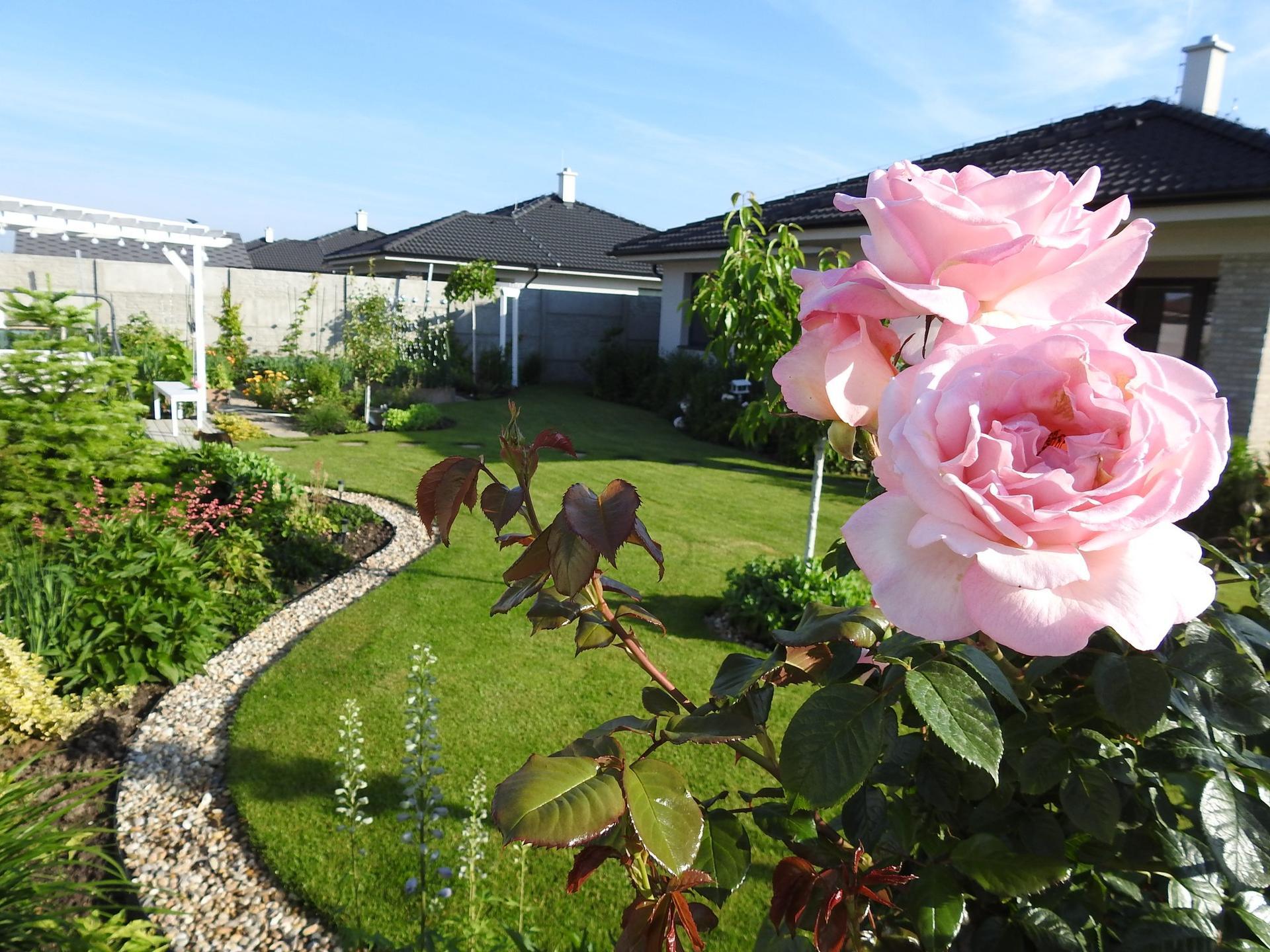 Návrh aj realizácia záhrady v mojom ponímaní - Obrázok č. 4