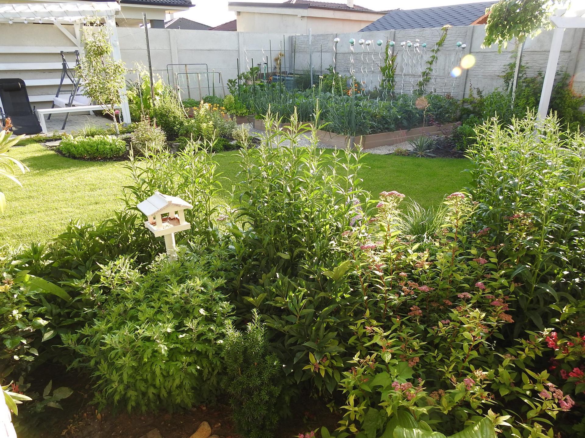 Návrh aj realizácia záhrady v mojom ponímaní - Obrázok č. 11