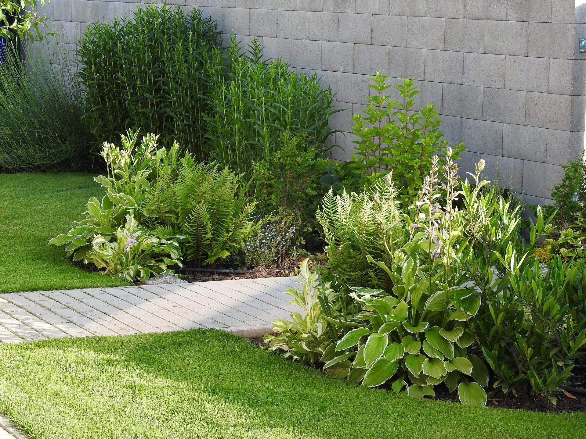 Návrh aj realizácia záhrady v mojom ponímaní - vchod - pred záhradka