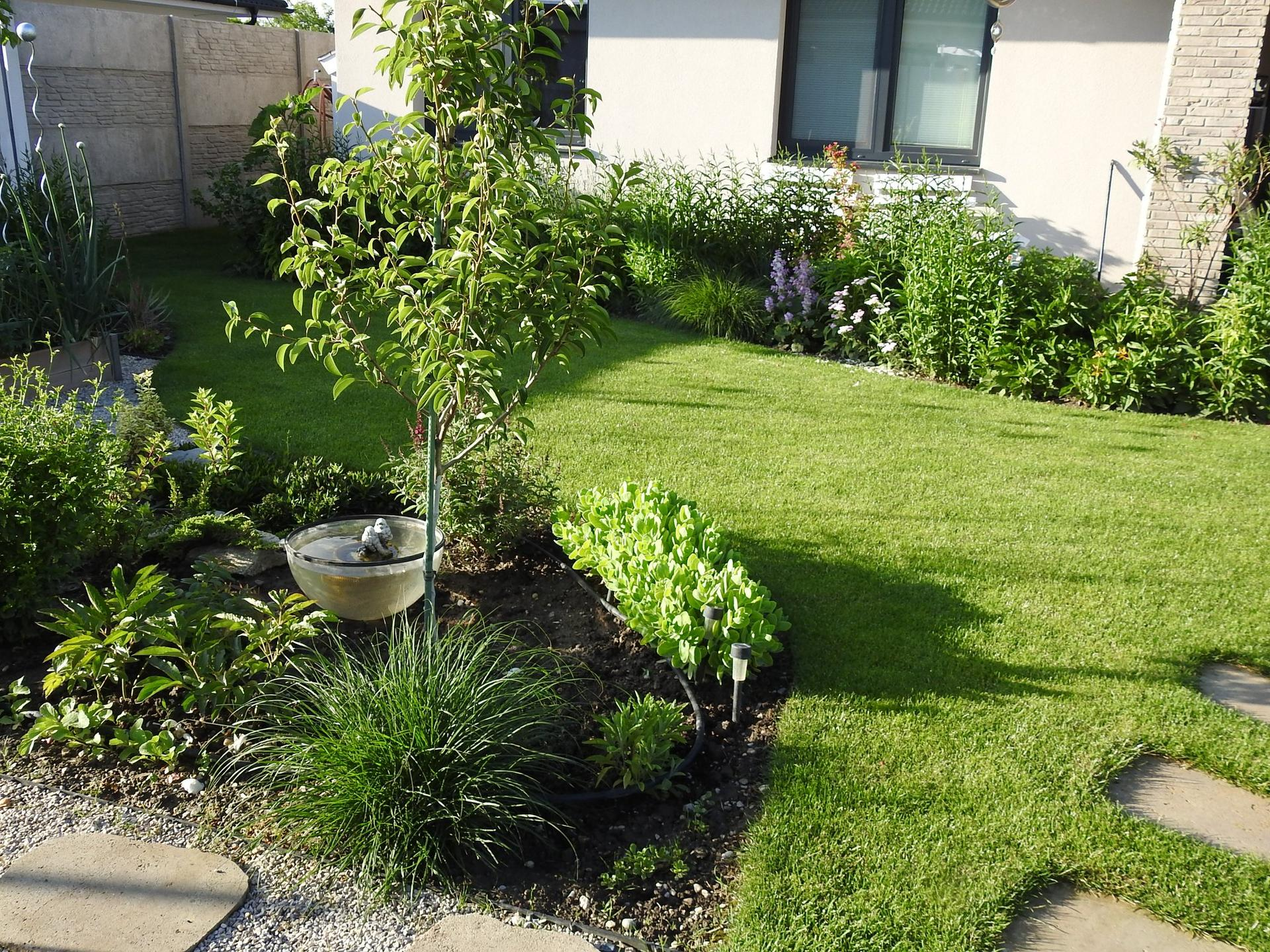 Návrh aj realizácia záhrady v mojom ponímaní - Obrázok č. 26
