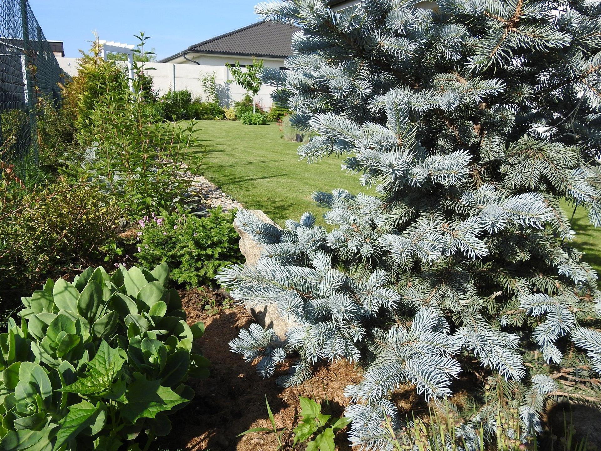 Návrh aj realizácia záhrady v mojom ponímaní - Obrázok č. 27