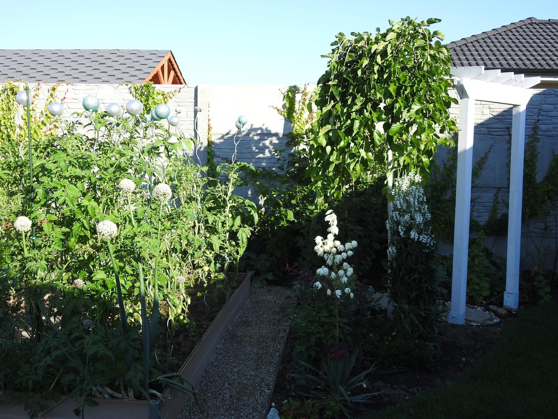 Úžitková časť záhrady. - Obrázok č. 13